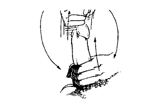 Kiek metu auga nario dydis Varpos dydzio aukstuju vyru
