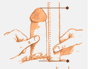 padidins urologu nari Kaip padidinti nari namuose be pinigu