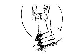Vyru nuotrauku nariu matmenys ir formos